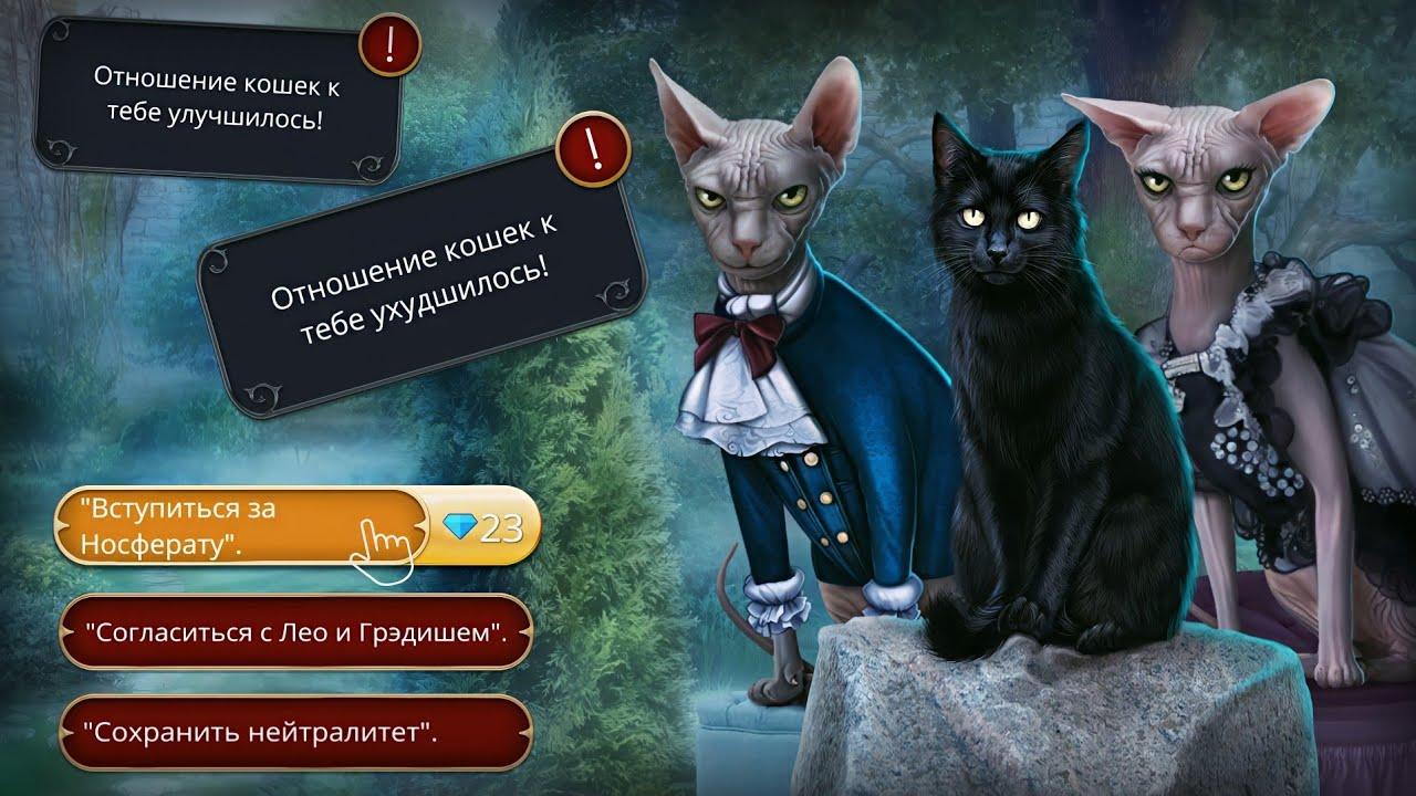 Улучшение отношений с котом Дракула История любви